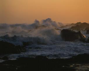荒れる波の写真素材 [FYI04030353]
