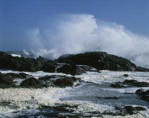 荒れる波の写真素材 [FYI04030360]
