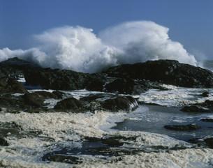 荒れる波の写真素材 [FYI04030361]
