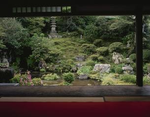 実光院庭園「契心園」の写真素材 [FYI04030615]