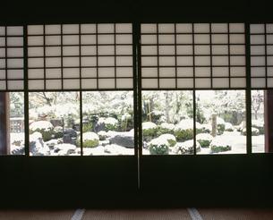 庭園の雪 妙満寺の写真素材 [FYI04030731]