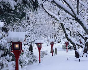 常照寺 雪の境内の写真素材 [FYI04030738]