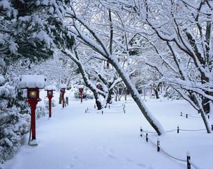常照寺 雪の境内の写真素材 [FYI04030740]