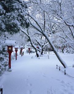 常照寺 雪の境内の写真素材 [FYI04030741]