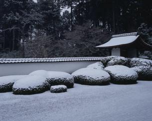 冬の庭園 枯山水 正伝寺の写真素材 [FYI04030752]
