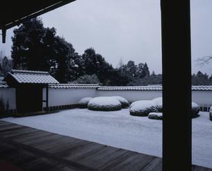 冬の庭園 枯山水 正伝寺の写真素材 [FYI04030753]