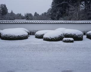 冬の庭園 枯山水 正伝寺の写真素材 [FYI04030754]