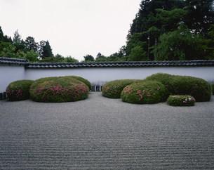 庭園(枯山水) 皐月 正伝寺の写真素材 [FYI04030806]