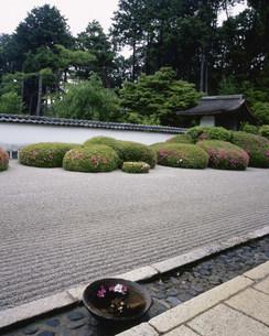 庭園(枯山水) 皐月 正伝寺の写真素材 [FYI04030810]