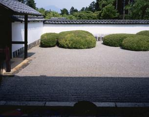 庭園(枯山水) 正伝寺の写真素材 [FYI04030828]