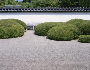 庭園(枯山水) 正伝寺の写真素材 [FYI04030832]