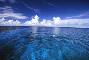 トラック環礁内リーフの写真素材 [FYI04032077]