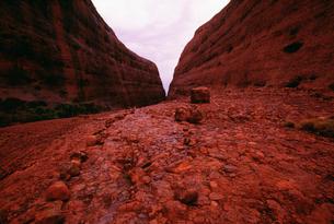 風の谷 ウルル カタジュタ国立公園の写真素材 [FYI04032097]