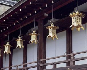 上賀茂神社の吊灯篭の写真素材 [FYI04032241]