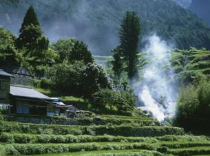 丸山の田園風景の写真素材 [FYI04032600]