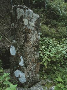 矢の川の六字名号碑の写真素材 [FYI04032612]