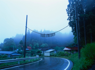 梅の道切り 村境の結界の写真素材 [FYI04032797]