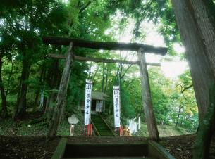 中沢の虫ボイ(虫送り) 蒼前神社の写真素材 [FYI04032812]