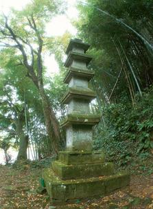 田原家五重塔の写真素材 [FYI04032861]