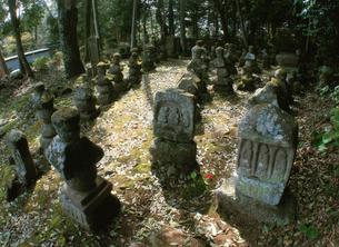 泉福寺石塔群の写真素材 [FYI04032871]