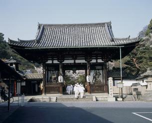 桜の西国第13番礼所 石山寺の写真素材 [FYI04032934]