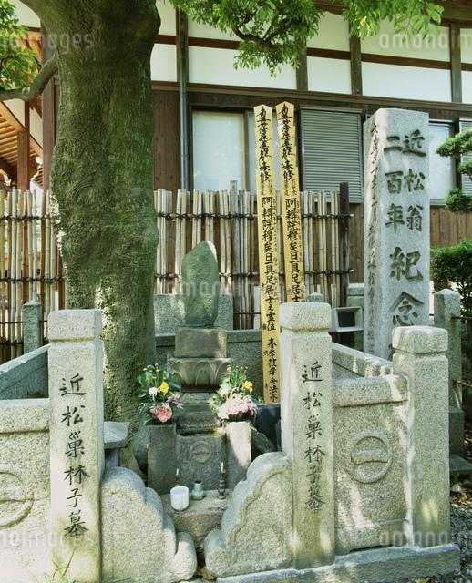 近松門左衛門の墓 廣濟寺の写真素材 [FYI04032944]