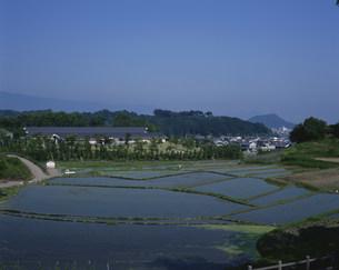 万葉文化館と甘樫の丘の写真素材 [FYI04032946]