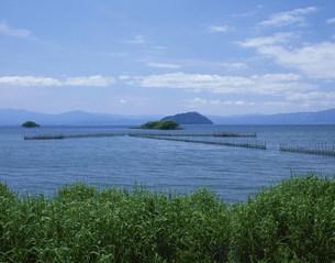 えり網と竹生島の写真素材 [FYI04032999]