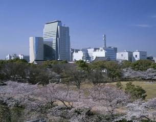 西の丸庭園と大阪歴史博物館の写真素材 [FYI04033031]