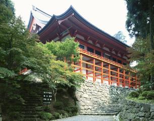 延暦寺横川中堂の写真素材 [FYI04033117]