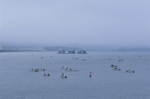 シジミ漁 宍道湖の写真素材 [FYI04033149]