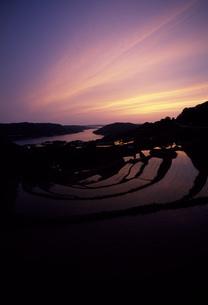 夕焼けの肥前町棚田の写真素材 [FYI04033169]