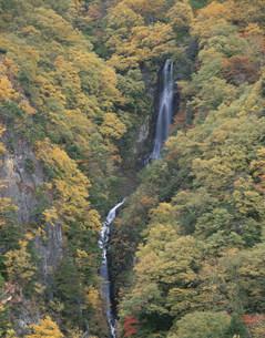 松川渓谷 八滝の写真素材 [FYI04033341]