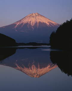 田貫湖からの逆さ富士の写真素材 [FYI04033349]