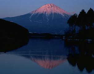 富士山と田貫湖の逆さ富士夕景の写真素材 [FYI04033714]