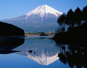 田貫湖に映る逆さ富士の写真素材 [FYI04033761]