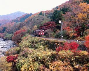 わたらせ渓谷鐵道の写真素材 [FYI04033776]