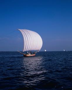 霞ヶ浦の帆引船の写真素材 [FYI04033831]