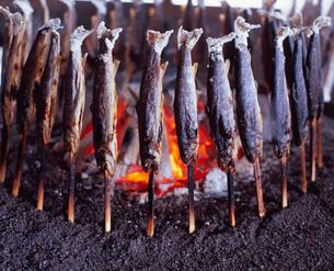 イワナ炭火焼の写真素材 [FYI04033849]