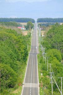 直線道路の写真素材 [FYI04033889]