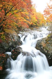 三階滝と紅葉の写真素材 [FYI04033895]