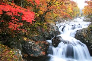 三階滝と紅葉の写真素材 [FYI04033896]