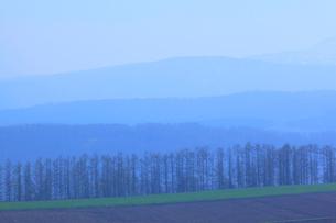 早朝の山並みの写真素材 [FYI04033955]