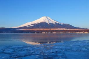 山中湖と富士山の写真素材 [FYI04034136]