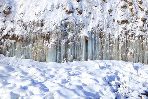 白川氷柱群の写真素材 [FYI04034145]