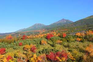 望岳台の紅葉の写真素材 [FYI04034192]