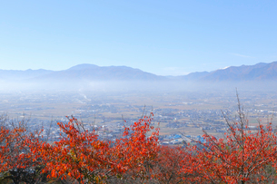 松本市街と紅葉の写真素材 [FYI04034284]