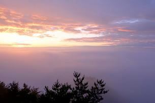 濃霧の北山崎の写真素材 [FYI04034307]