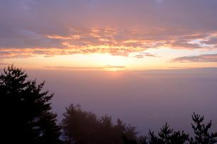 濃霧の北山崎の写真素材 [FYI04034314]