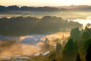 星峠の雲海の写真素材 [FYI04034417]